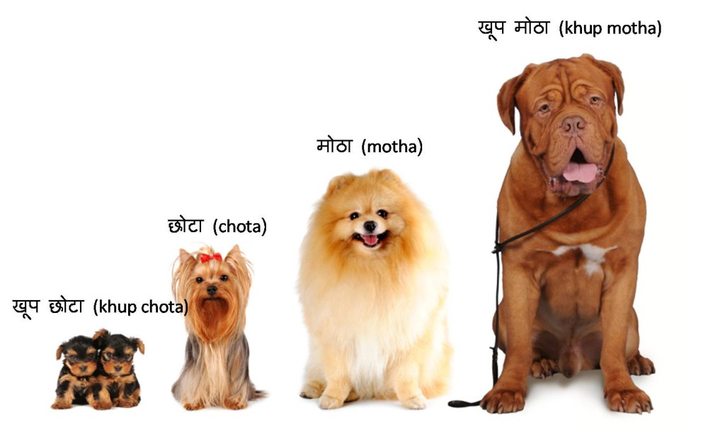 marathi adjectives